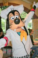 Find Magic And Fun At Disney Theme Parks in Florida