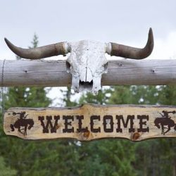 Dude Ranch Vacations That You Have To Experience