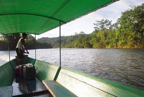 Boat tour on jungle expedition adventurous vacations