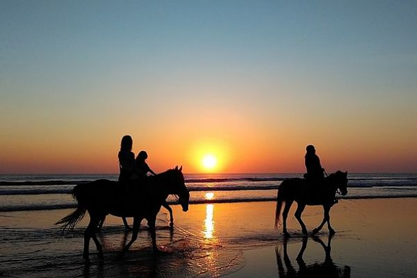 luxury dude ranch vacations