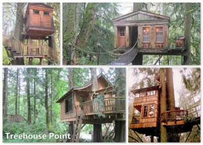 Treehouse Point hotel