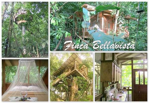Treehouse Resort Costa Rica