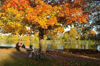 Fantastic Bike Routes In The U.S. And Beyond