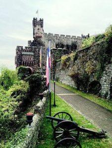 Rhine river castles: Burg Reichenstein