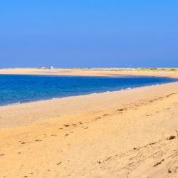 5 Reasons Why You Need a Cape Cod Beach Vacation