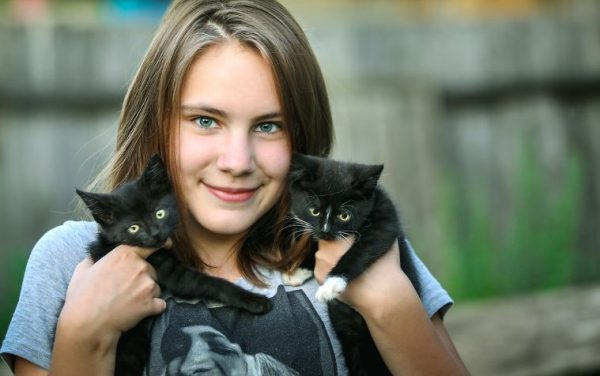 pet sitting girl and two cats