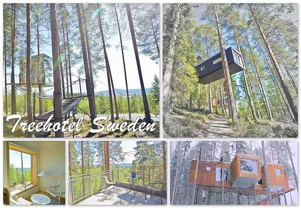 Treehouse Resort Sweden