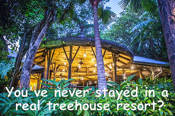 Treehouse Resort - Best Treetop Hotel In The World